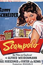 Image of Scampolo