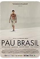 Image of Pau Brasil