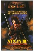 Image of Ninja III: The Domination