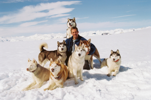 Paul Walker in Eight Below (2006)