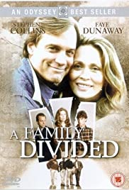 A Family Divided (1995) Poster - Movie Forum, Cast, Reviews
