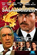 Primary image for The Salamander
