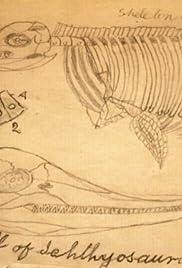 Dinosaur Wars Poster