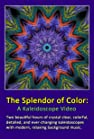 The Splendor of Color: A Kaleidoscope Video
