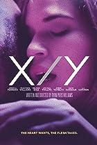 Image of X/Y