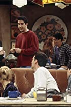 Image of Friends: The One with Frank Jr.