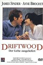 Image of Driftwood