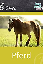 Das Pferd Poster