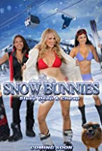 Primary image for Snow Bunnies