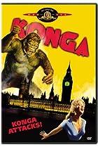 Image of Konga