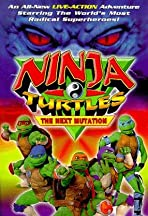 Saban's Ninja Turtles: The Next Mutation