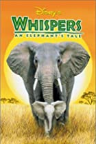 Image of Whispers: An Elephant's Tale