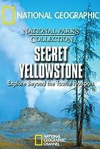 Image of Secret Yellowstone