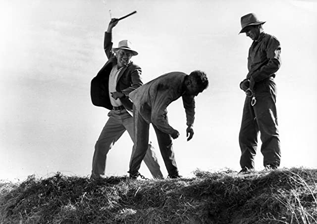 Paul Newman and Strother Martin in Cool Hand Luke (1967)