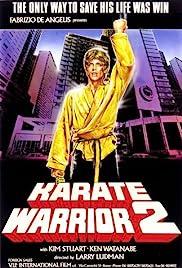 Karate Warrior 2 Poster