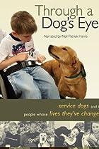 Image of Through a Dog's Eyes