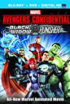 Image of Avengers Confidential: Black Widow & Punisher