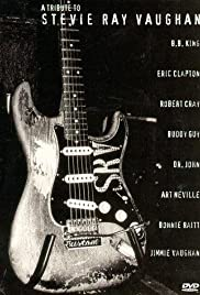 A Tribute to Stevie Ray Vaughan Poster