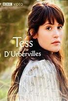 Image of Tess of the D'Urbervilles
