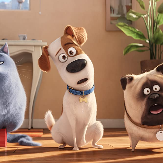 Louis C.K., Lake Bell, and Bobby Moynihan in The Secret Life of Pets (2016)
