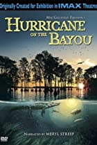 Image of Hurricane on the Bayou