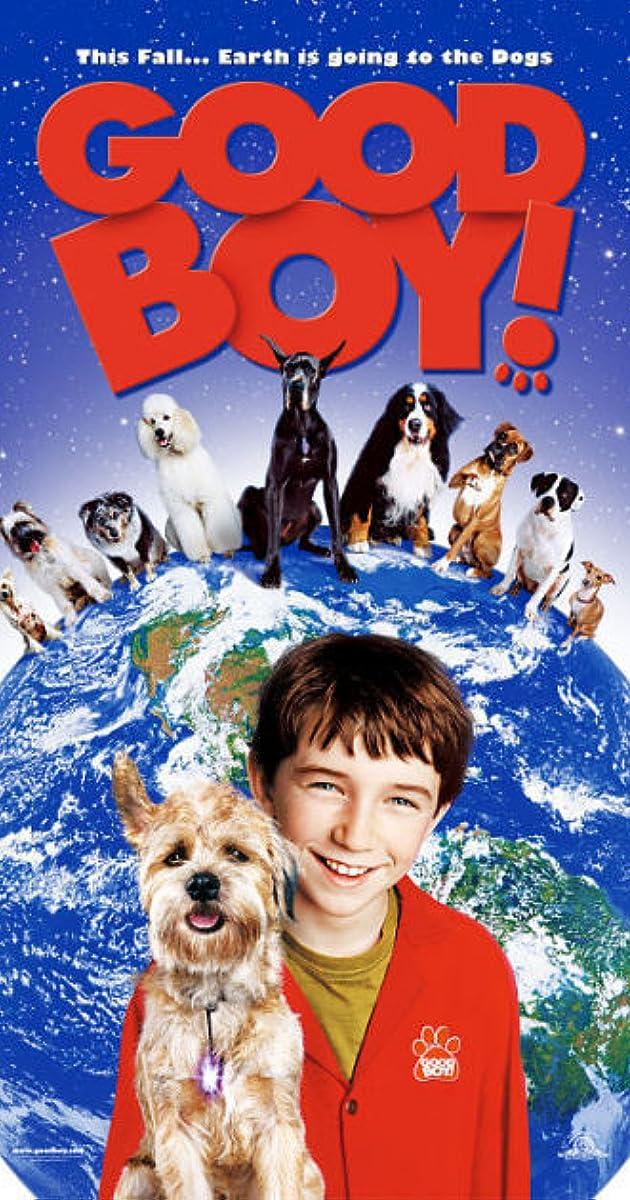 Good Boy Dogs Toronto