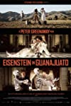 Greenaway's Eisenstein casts up