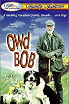 Image of Owd Bob