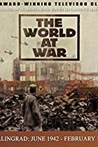 Image of The World at War: Stalingrad: June 1942-February 1943