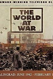 Stalingrad: June 1942-February 1943 Poster
