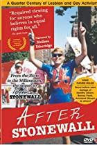 Image of After Stonewall