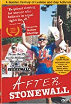 Primary image for After Stonewall