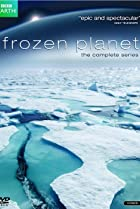Image of Frozen Planet
