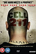 Image of Cell 211