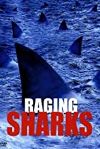 Image of Raging Sharks