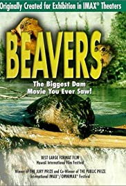 Beavers (1988) Poster - Movie Forum, Cast, Reviews