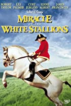 Image of Miracle of the White Stallions