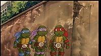 Adventures in Turtle-Sitting