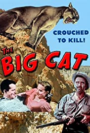 The Big Cat (1949) Poster - Movie Forum, Cast, Reviews