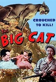 The Big Cat(1949) Poster - Movie Forum, Cast, Reviews