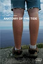 Image of Anatomy of the Tide