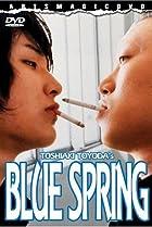 Image of Blue Spring