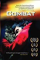 Image of Combat
