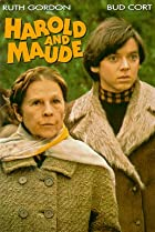 Image of Harold and Maude