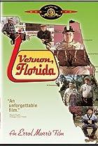 Image of Vernon, Florida