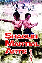 Image of Shaolin Martial Arts