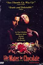 Como agua para chocolate (1992) Poster