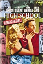 Image of High School Confidential!