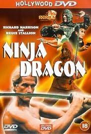 Ninja Dragon Poster