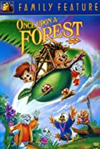 Image of Once Upon a Forest
